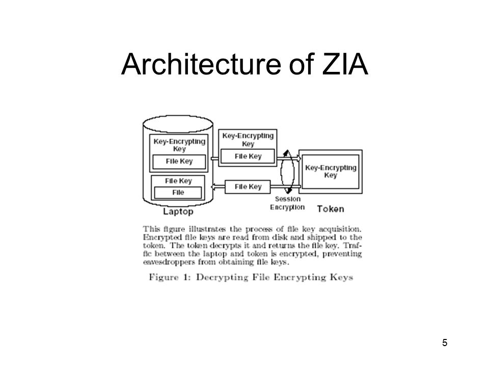 5 Architecture of ZIA