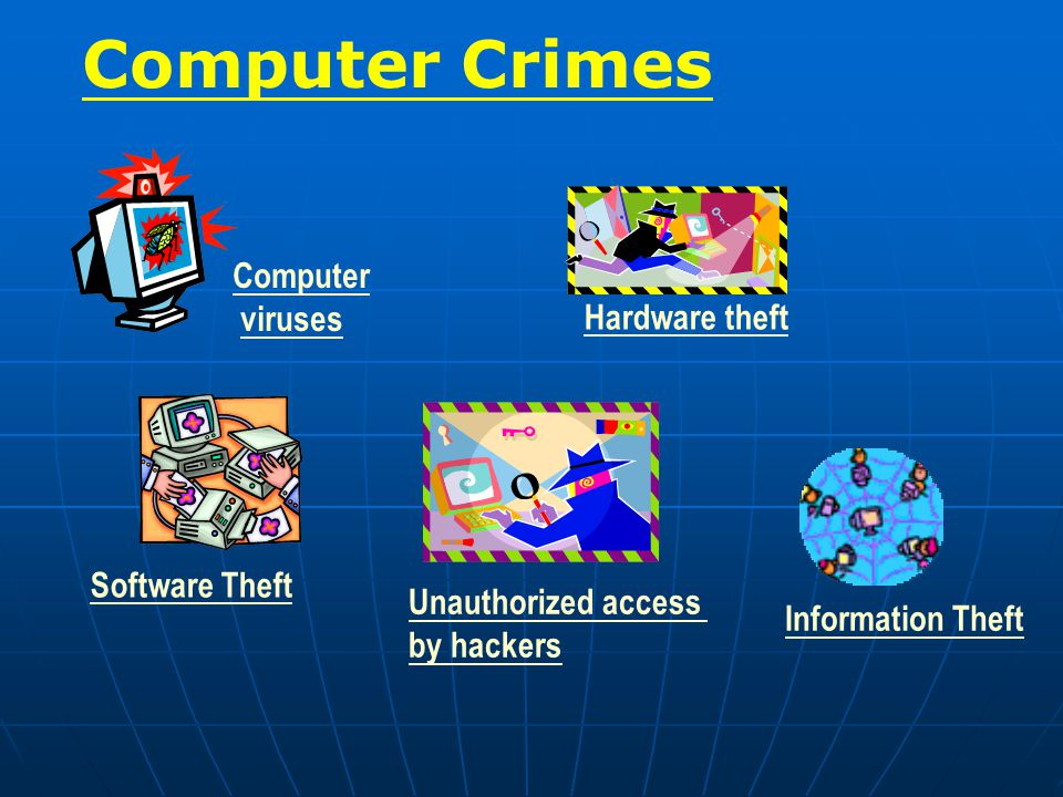 Computer viruses Hardware theft Software Theft Unauthorized access by hackers Information Theft Computer Crimes
