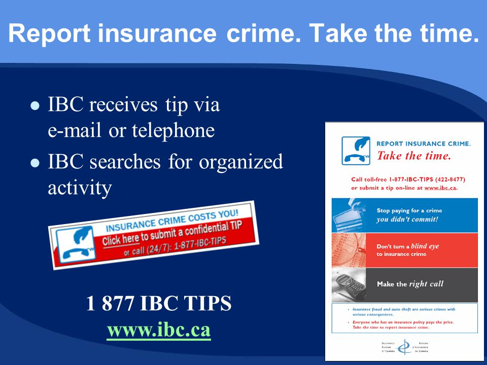 Report insurance crime. Take the time.