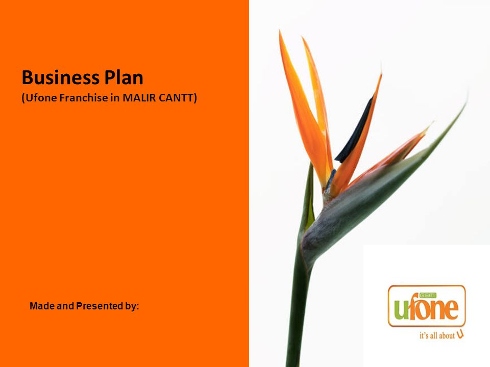 Business Plan (Ufone Franchise in MALIR CANTT) Made and Presented by: