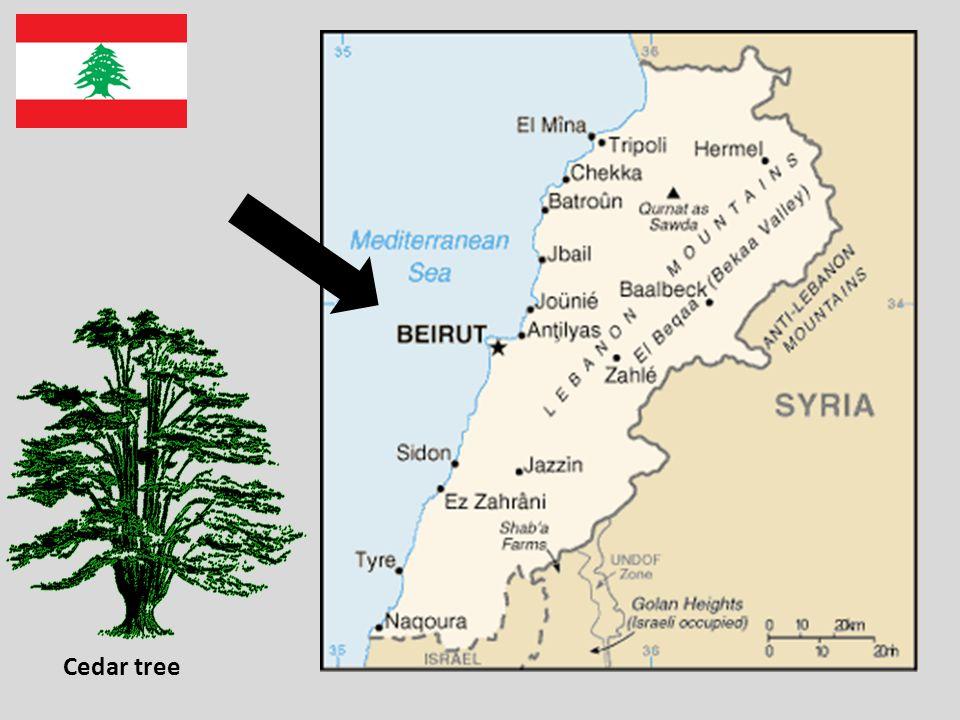 لبنان You could make a comparison between the British educational system and the Lebanese one.