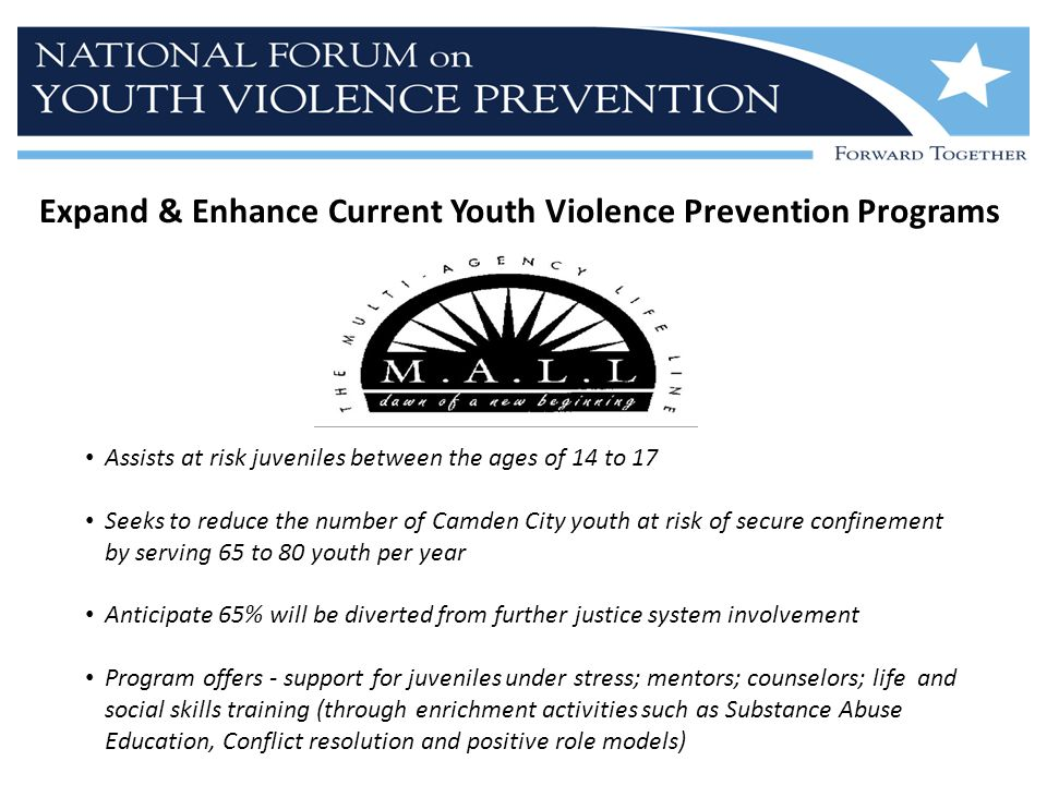 Expand & Enhance Current Youth Violence Prevention Programs Assists at risk juveniles between the ages of 14 to 17 Seeks to reduce the number of Camden City youth at risk of secure confinement by serving 65 to 80 youth per year Anticipate 65% will be diverted from further justice system involvement Program offers - support for juveniles under stress; mentors; counselors; life and social skills training (through enrichment activities such as Substance Abuse Education, Conflict resolution and positive role models)