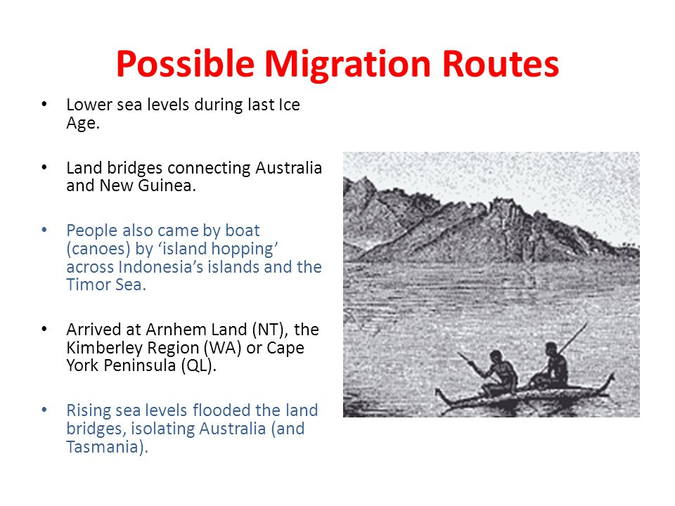 Possible Migration Routes Lower sea levels during last Ice Age. Land bridges connecting Australia and New Guinea. People also came by boat (canoes) by