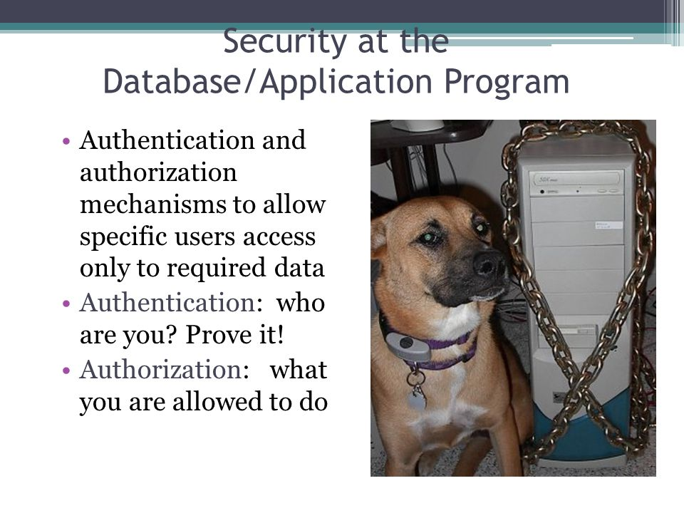10 Security at the Database/Application Program Authentication and authorization mechanisms to allow specific users access only to required data Authe