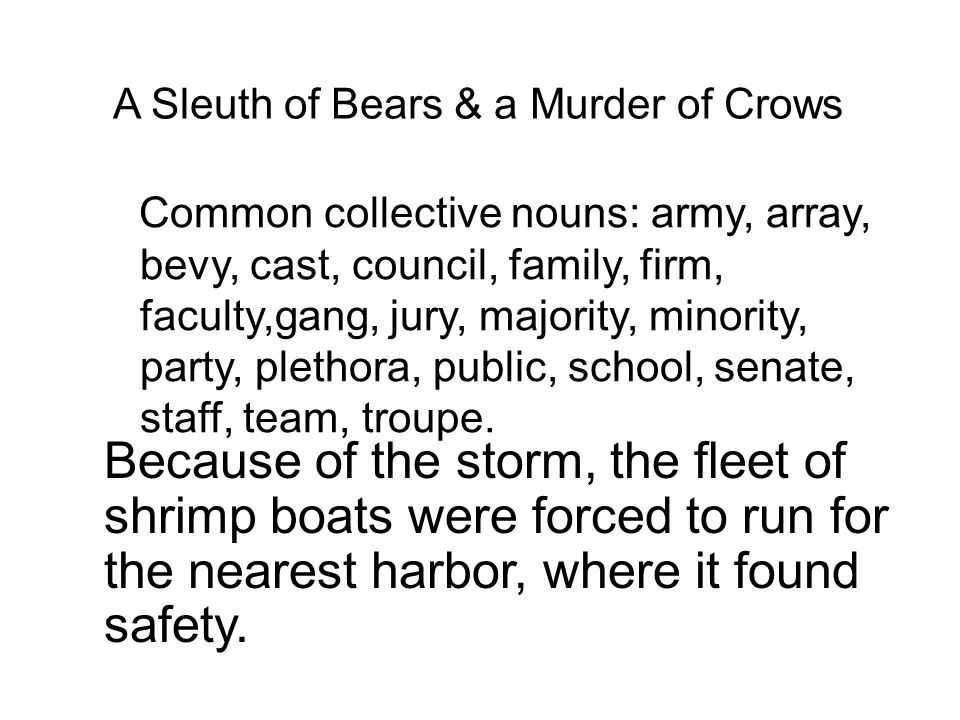 A Sleuth of Bears & a Murder of Crows Common collective nouns: army, array, bevy, cast, council, family, firm, faculty,gang, jury, majority, minority, party, plethora, public, school, senate, staff, team, troupe.