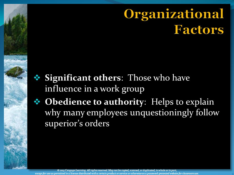  Significant others: Those who have influence in a work group  Obedience to authority: Helps to explain why many employees unquestioningly follow superior's orders 11 © 2015 Cengage Learning.