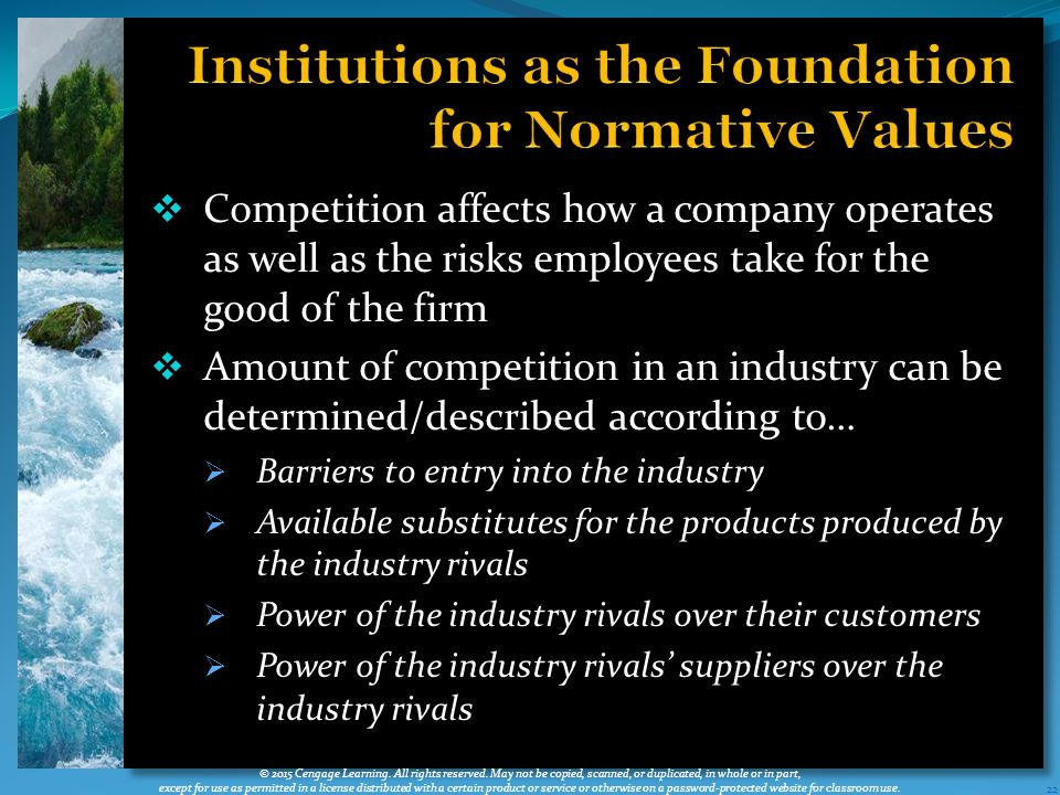 Competition affects how a company operates as well as the risks employees take for the good of the firm  Amount of competition in an industry can be determined/described according to…  Barriers to entry into the industry  Available substitutes for the products produced by the industry rivals  Power of the industry rivals over their customers  Power of the industry rivals' suppliers over the industry rivals 22 © 2015 Cengage Learning.