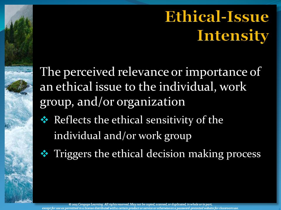 The perceived relevance or importance of an ethical issue to the individual, work group, and/or organization  Reflects the ethical sensitivity of the individual and/or work group  Triggers the ethical decision making process 4 © 2015 Cengage Learning.