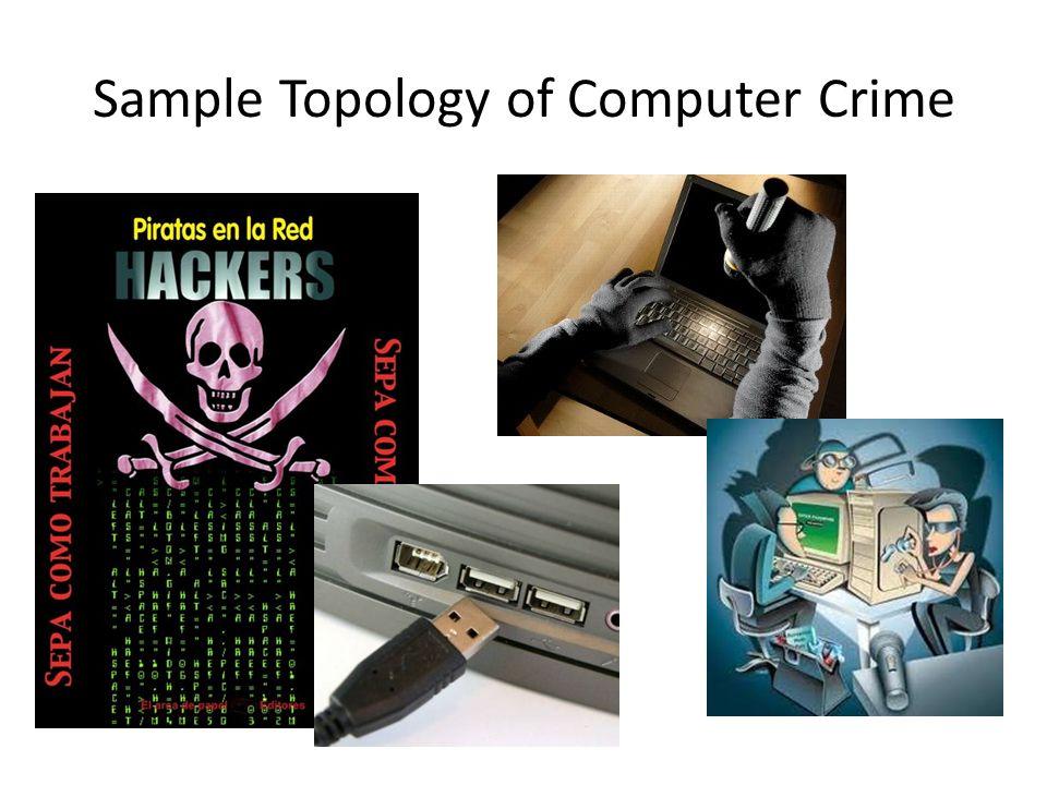Sample Topology of Computer Crime