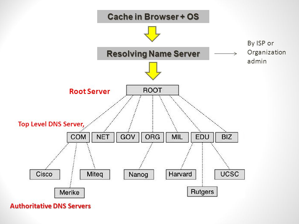 Cache in Browser + OS Resolving Name Server By ISP or Organization admin Root Server Top Level DNS Server, Authoritative DNS Servers