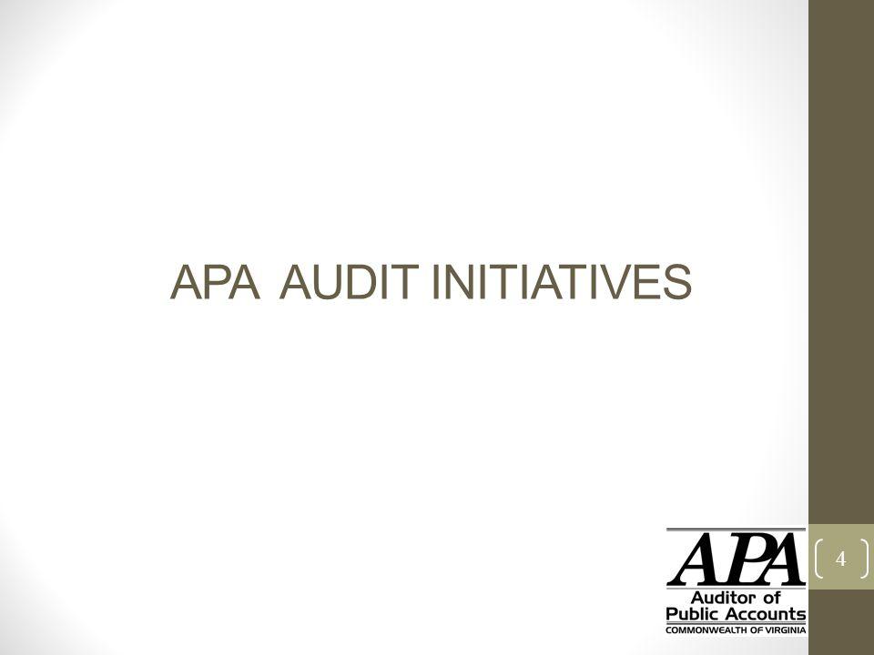 APA AUDIT INITIATIVES 4
