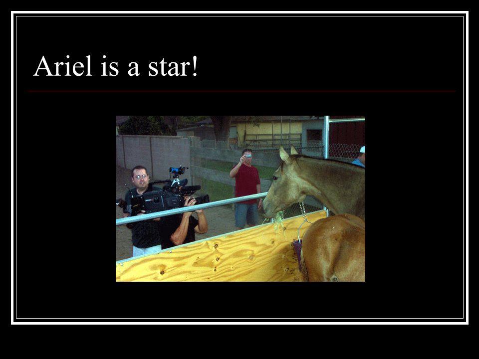 Ariel is a star!