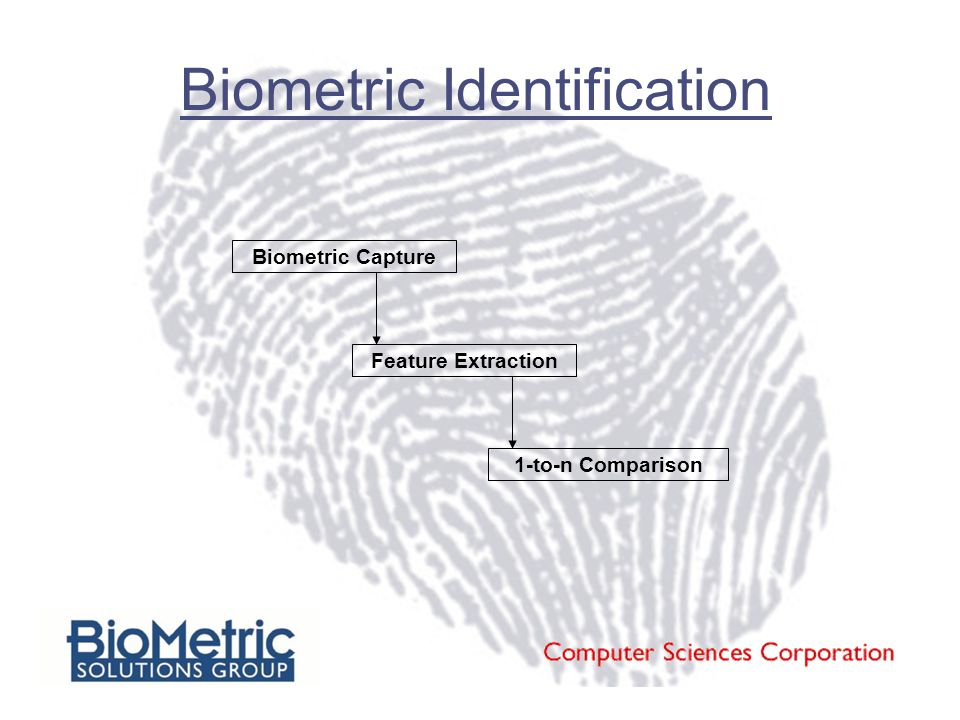 Biometric Identification Biometric Capture Feature Extraction 1-to-n Comparison
