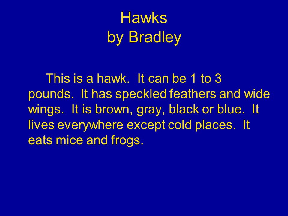 Hawks by Bradley This is a hawk. It can be 1 to 3 pounds.