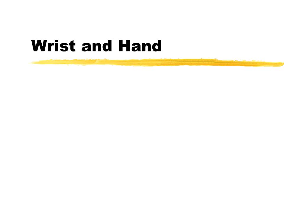 Wrist Radiocarpal Mid-carpal (intercarpal) zmaintain length- tension relationship for hand musculature
