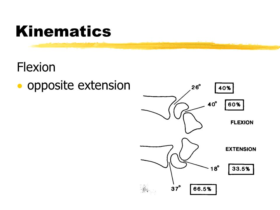 Kinematics Flexion  opposite extension
