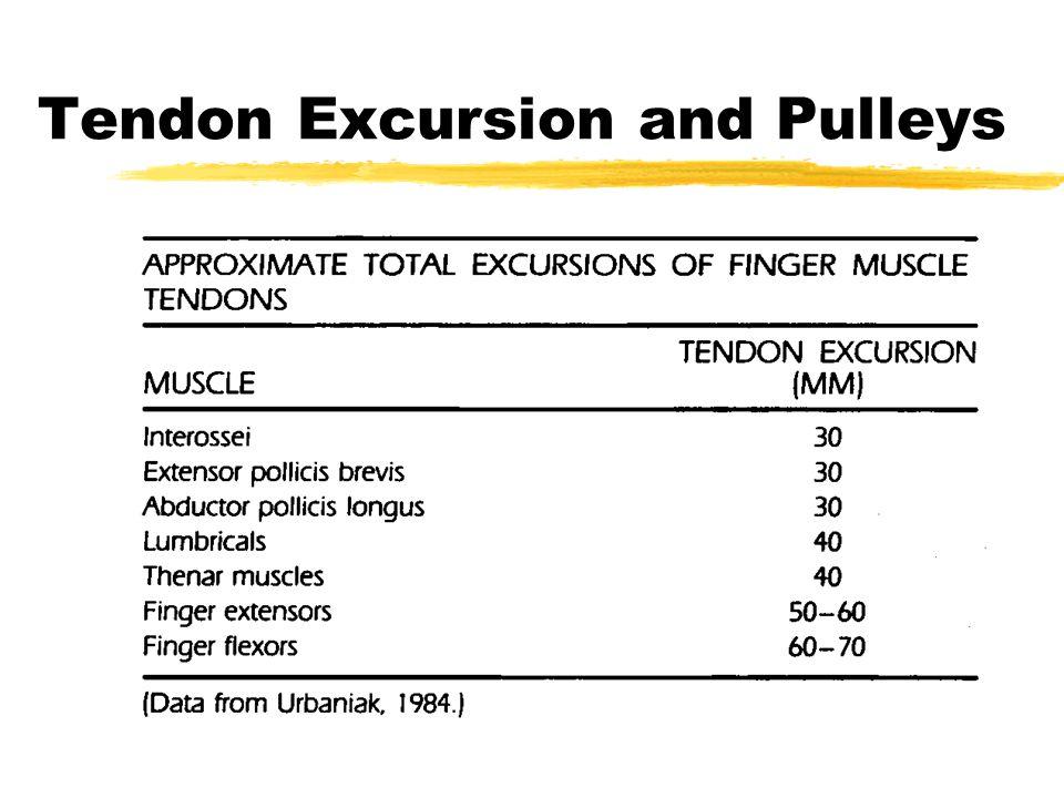 Sliding of flexor/extensor tendons  proximal jts.
