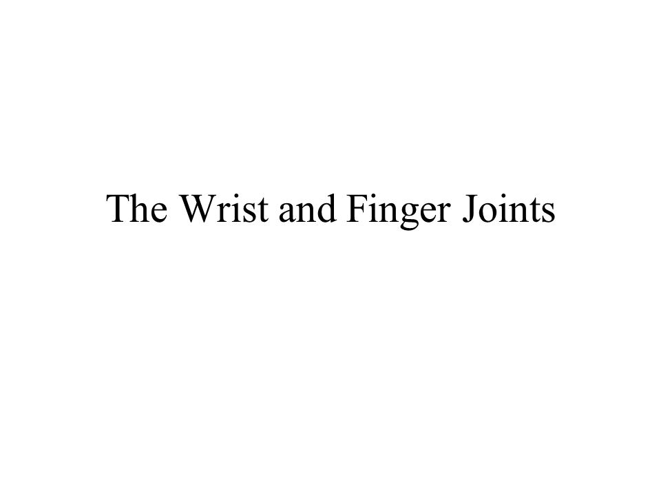 Remember, a joint is simply two bones which articulate.