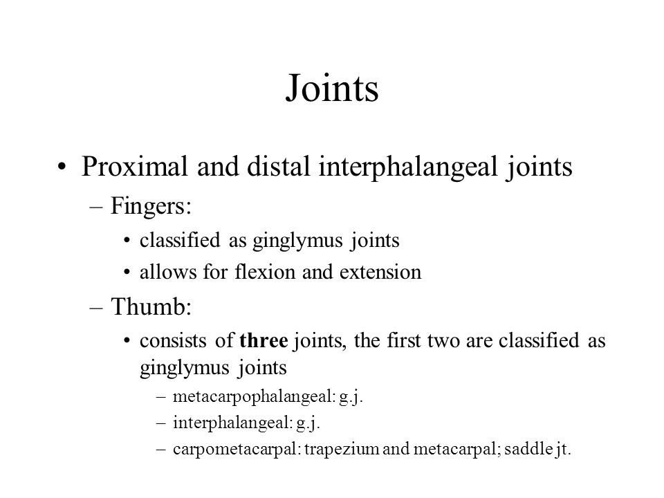 Joints Proximal and distal interphalangeal joints –Fingers: classified as ginglymus joints allows for flexion and extension –Thumb: consists of three