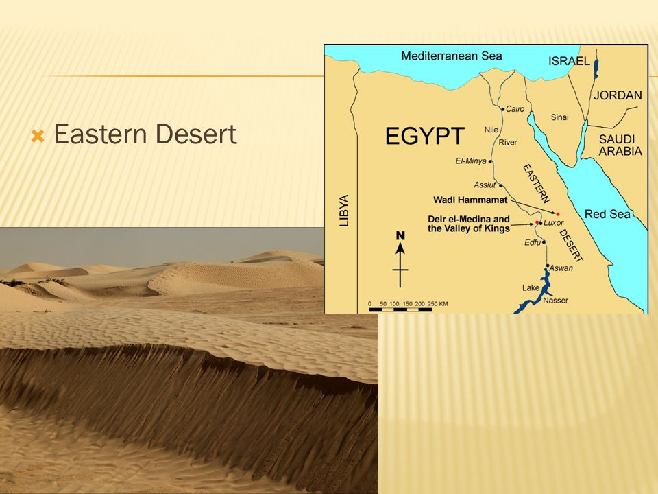 Word Bank The Red Sea Mediterranean Sea Nile River Persian Gulf Sahara Desert Eastern Desert Nile Delta