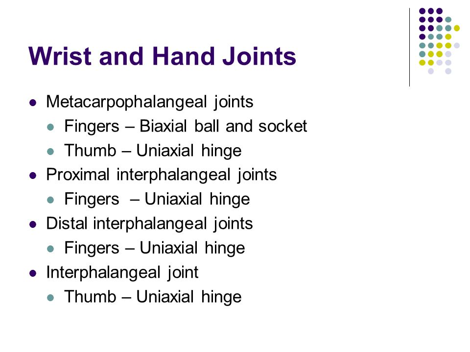 Wrist and Hand Joints Metacarpophalangeal joints Fingers – Biaxial ball and socket Thumb – Uniaxial hinge Proximal interphalangeal joints Fingers – Un