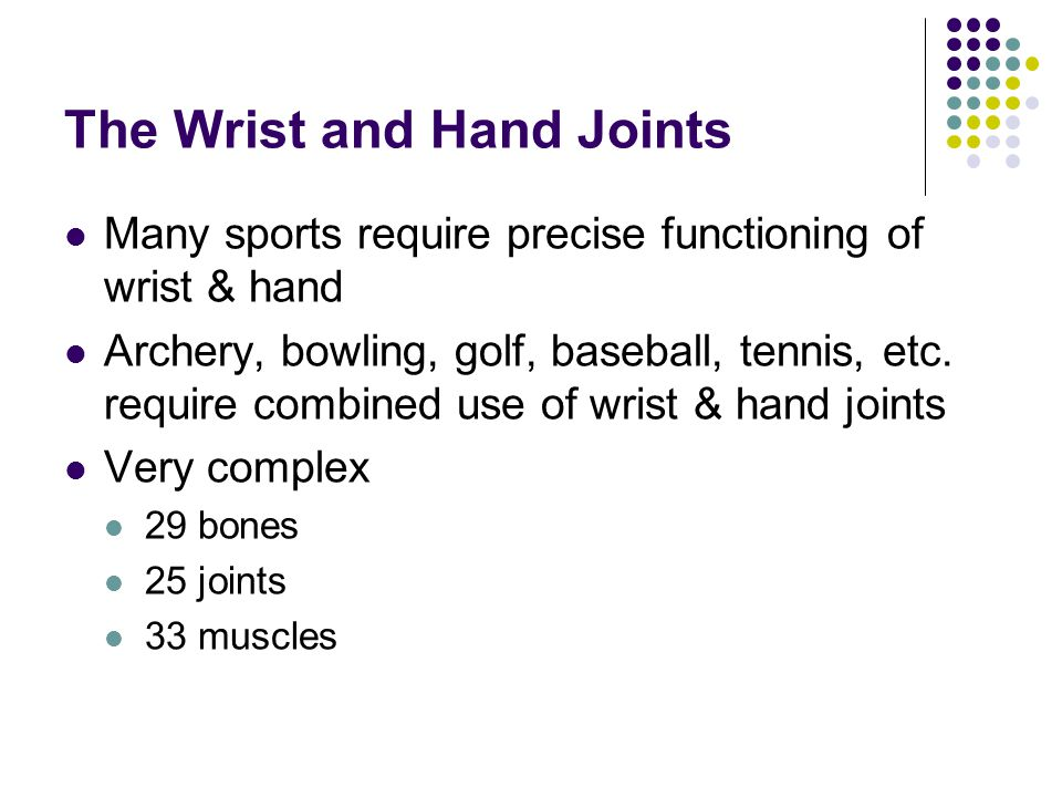 The Wrist and Hand Joints Many sports require precise functioning of wrist & hand Archery, bowling, golf, baseball, tennis, etc. require combined use