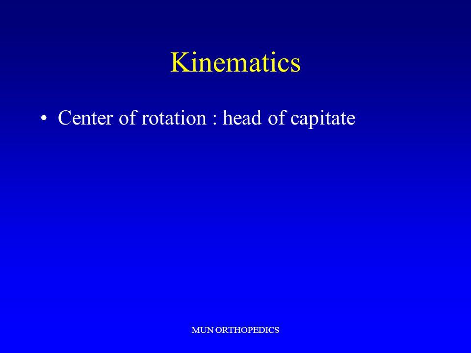 Kinematics Center of rotation : head of capitate