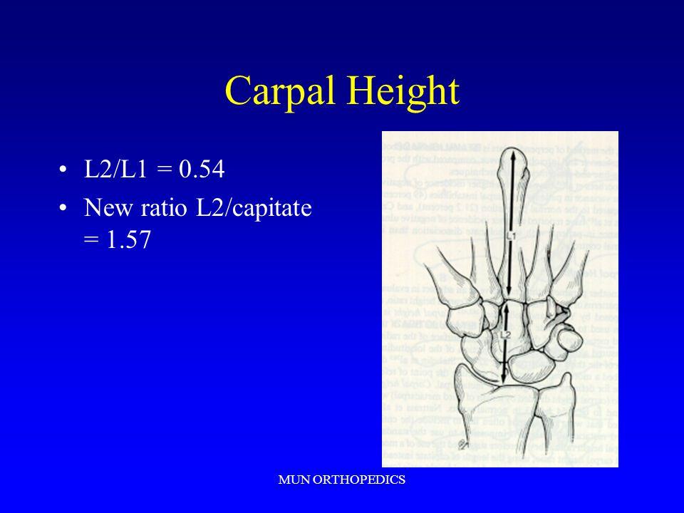 MUN ORTHOPEDICS Carpal Height L2/L1 = 0.54 New ratio L2/capitate = 1.57