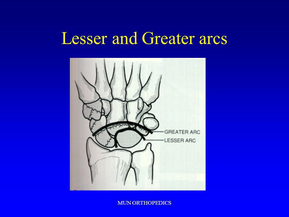 MUN ORTHOPEDICS Lesser and Greater arcs