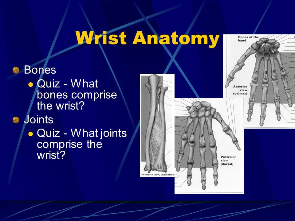 Wrist Anatomy Bones Quiz - What bones comprise the wrist? Joints Quiz - What joints comprise the wrist?