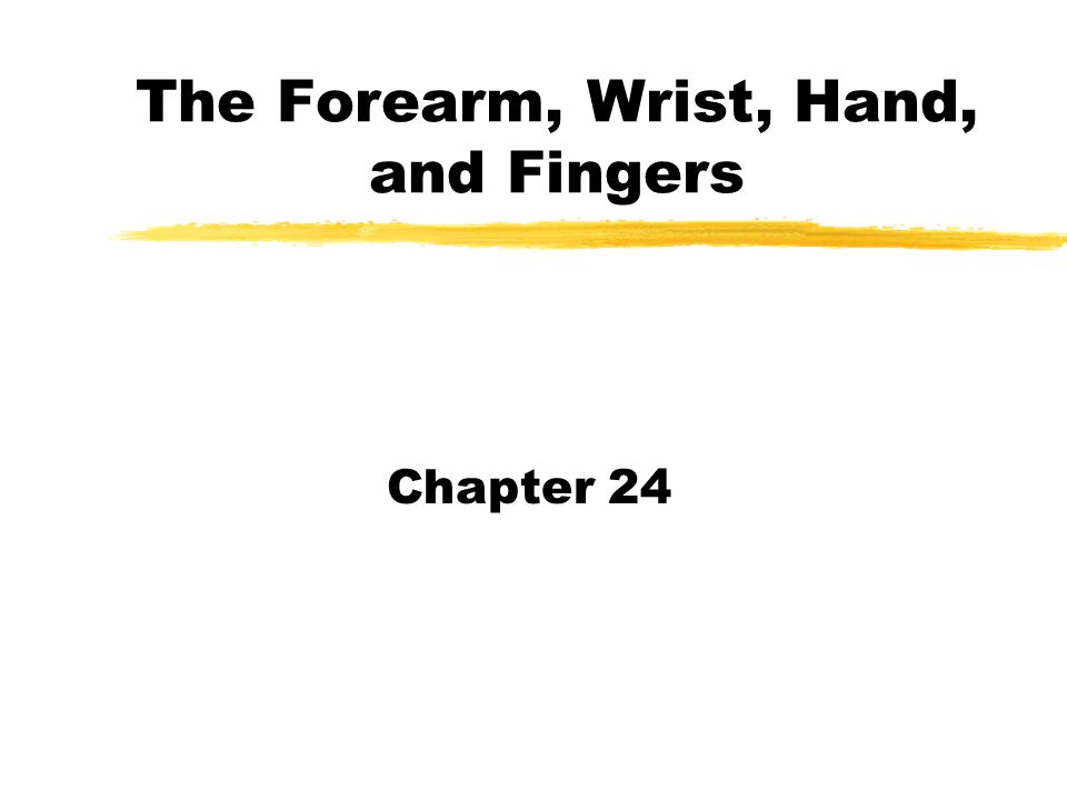 The Forearm, Wrist, Hand, and Fingers Chapter 24