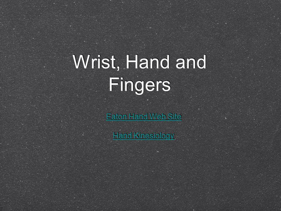 Wrist, Hand and Fingers Eaton Hand Web Site Hand Kinesiology Eaton Hand Web Site Hand Kinesiology