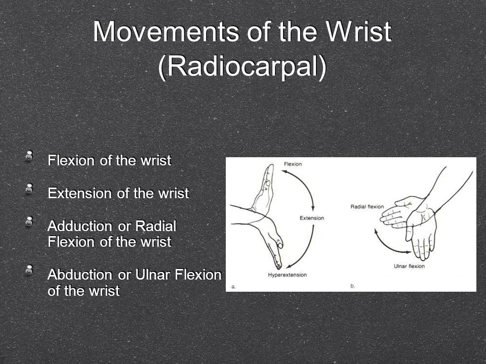 Movements of the Wrist (Radiocarpal) Flexion of the wrist Extension of the wrist Adduction or Radial Flexion of the wrist Abduction or Ulnar Flexion o