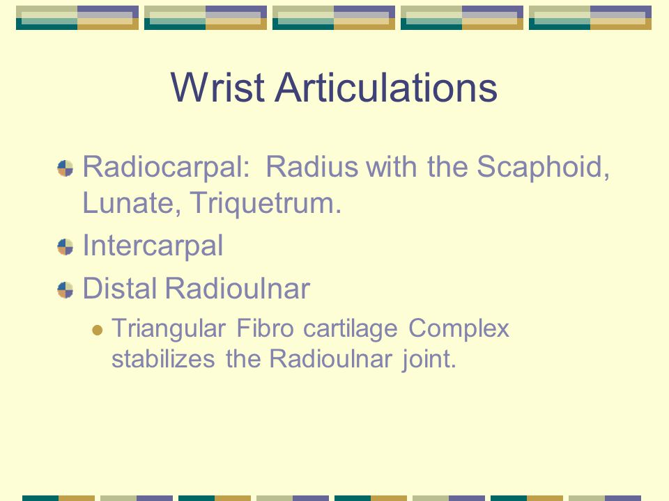 Fractures Distal Radial and Ulnar fractures Monteggia's fracture Galeazzi's fracture Colle's fracture Smith's fracture Scaphoid fracture Hamate fracture Triquetrum fracture Kienbock's disease