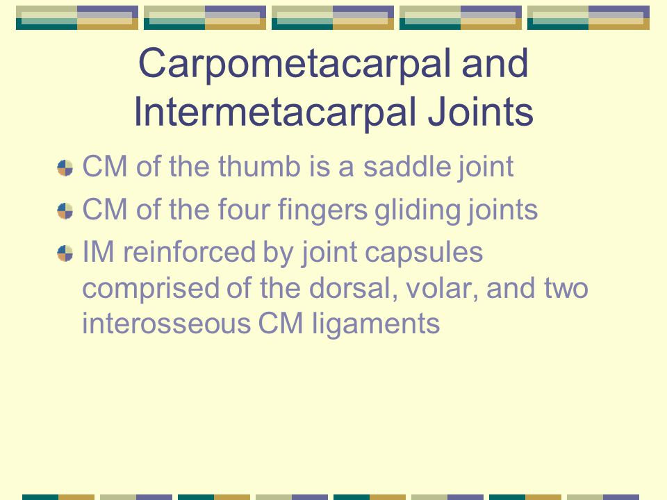 Carpometacarpal and Intermetacarpal Joints CM of the thumb is a saddle joint CM of the four fingers gliding joints IM reinforced by joint capsules com