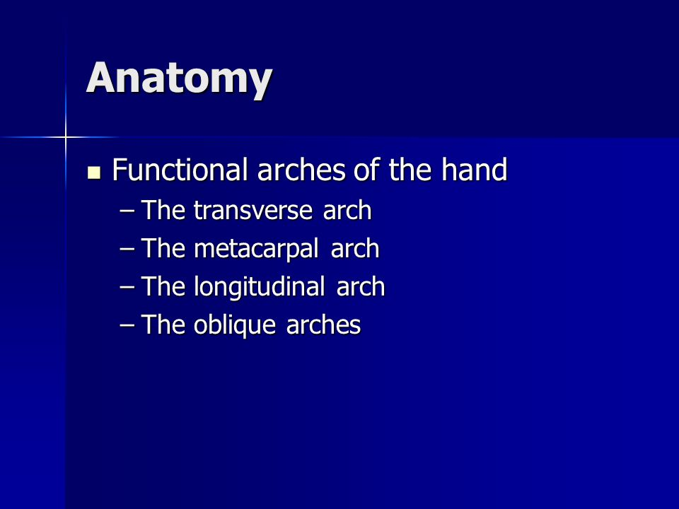 Anatomy Functional arches of the hand Functional arches of the hand –The transverse arch –The metacarpal arch –The longitudinal arch –The oblique arch