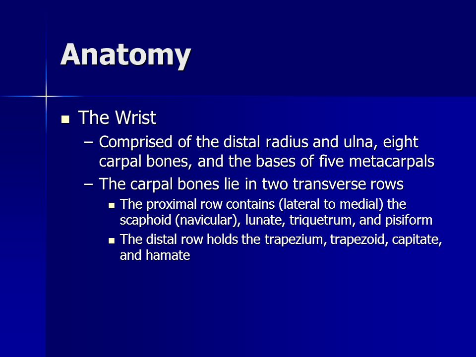 Anatomy The Wrist The Wrist –Comprised of the distal radius and ulna, eight carpal bones, and the bases of five metacarpals –The carpal bones lie in t