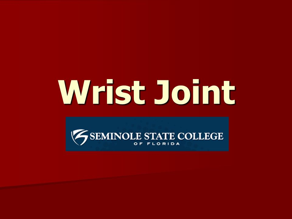 The radiocarpal joint and the midcarpal joint create the wrist.