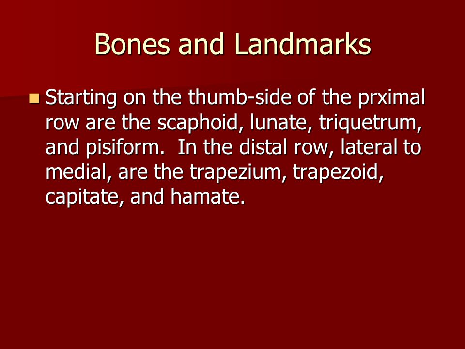 Bones and Landmarks Starting on the thumb-side of the prximal row are the scaphoid, lunate, triquetrum, and pisiform.