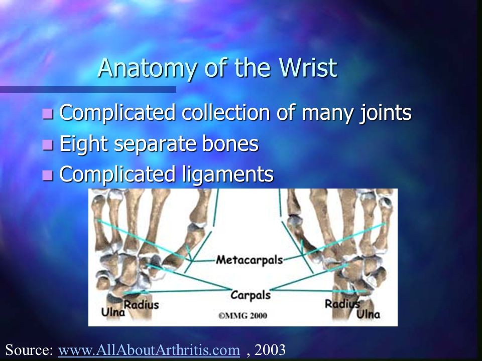 Anatomy of the Wrist Complicated collection of many joints Complicated collection of many joints Eight separate bones Eight separate bones Complicated