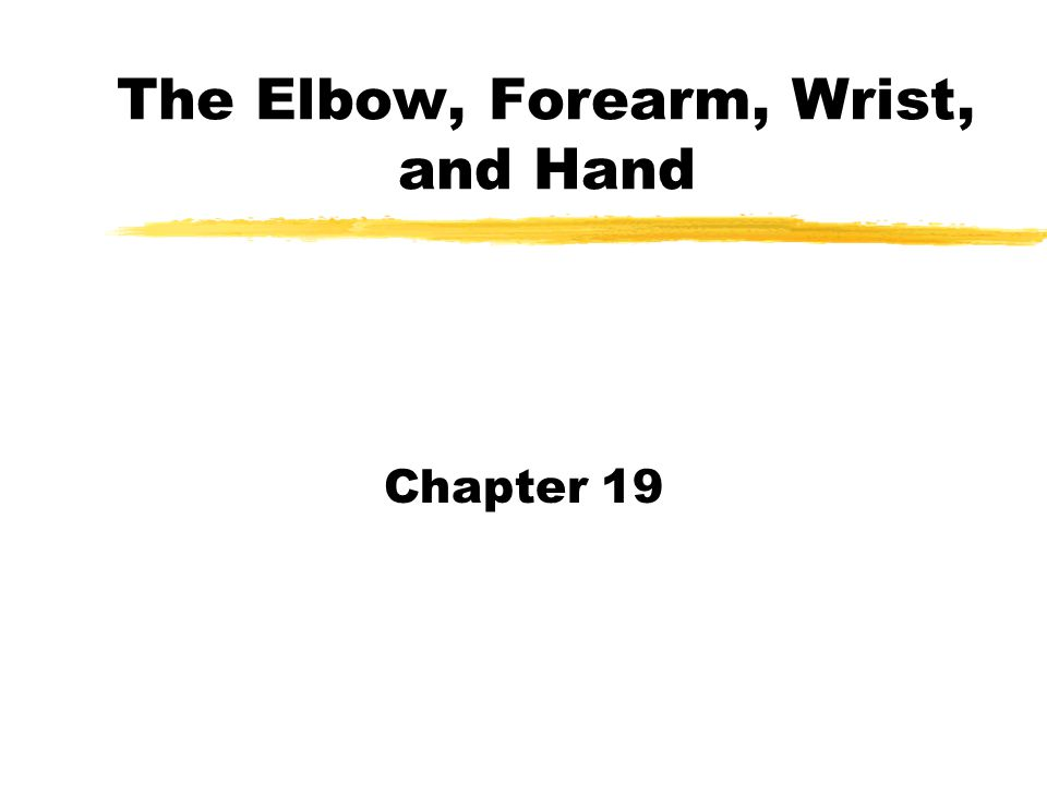 The Elbow, Forearm, Wrist, and Hand Chapter 19