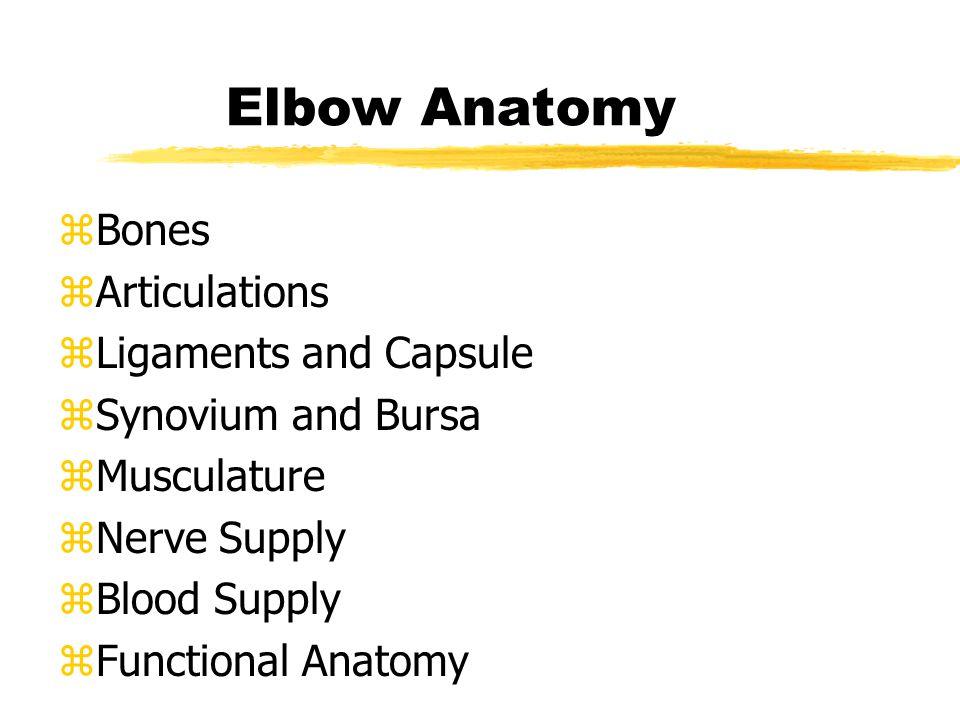 zBones zArticulations zLigaments and Capsule zSynovium and Bursa zMusculature zNerve Supply zBlood Supply zFunctional Anatomy Elbow Anatomy
