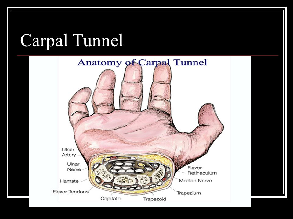 Special Tests Flexor Digitorum Superficialis Test Flexor Digitorum Profundus Test Bunnel-Littler Test Retinacular Test Allen Test Finklestein Test Tinnel Sign for Carpal Tunnel Syndrome Phalens Test Referred Pain from shoulder and Elbow