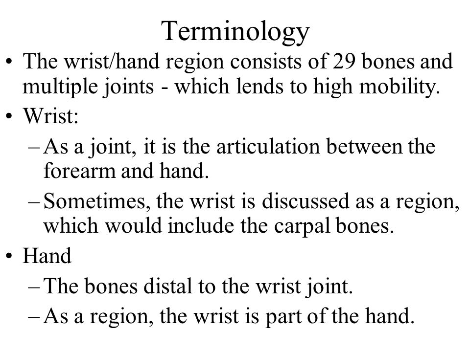 Bones 29 bones including: –(2 from the forearm, 27 from the hand) –Distal aspect of the radius and ulna –8 carpal (bulk of the hand) –14 phalanges (the fingers) –5 metacarpals –Total: 2+8+14+5=29