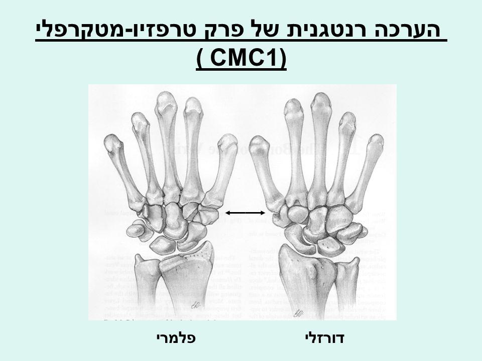 הערכה רנטגנית של פרק טרפזיו-מטקרפלי CMC1) ) דורזליפלמרי