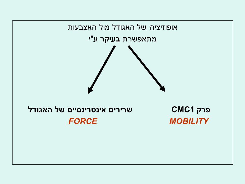אופוזיציה של האגודל מול האצבעות מתאפשרת בעיקר ע י פרק CMC1 שרירים אינטרינסיים של האגודל MOBILITY FORCE