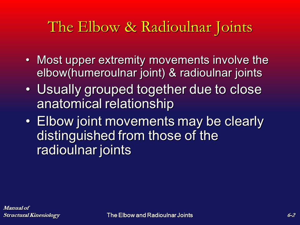 The Elbow & Radioulnar Joints Most upper extremity movements involve the elbow(humeroulnar joint) & radioulnar jointsMost upper extremity movements involve the elbow(humeroulnar joint) & radioulnar joints Usually grouped together due to close anatomical relationshipUsually grouped together due to close anatomical relationship Elbow joint movements may be clearly distinguished from those of the radioulnar jointsElbow joint movements may be clearly distinguished from those of the radioulnar joints Manual of Structural Kinesiology The Elbow and Radioulnar Joints 6-2