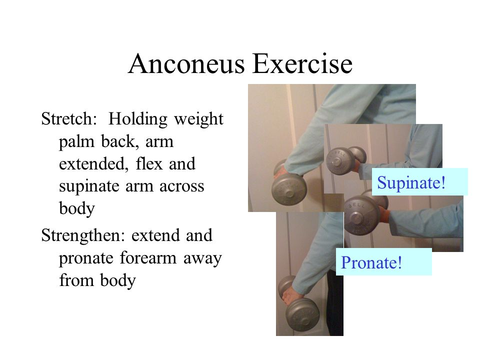 Anconeus Exercise Stretch: Holding weight palm back, arm extended, flex and supinate arm across body Strengthen: extend and pronate forearm away from body Supinate.