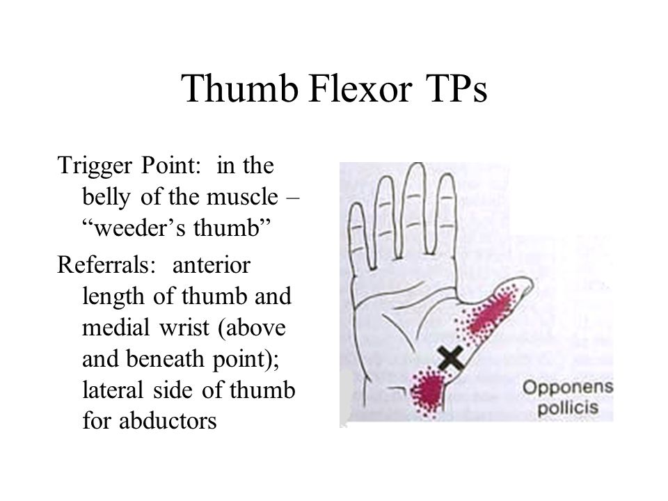Opponens Pollicis Exercise Stretch: Passively hyper-abduct the extended thumb with fingers of the opposite hand Strengthen: Press thumb and pinky together