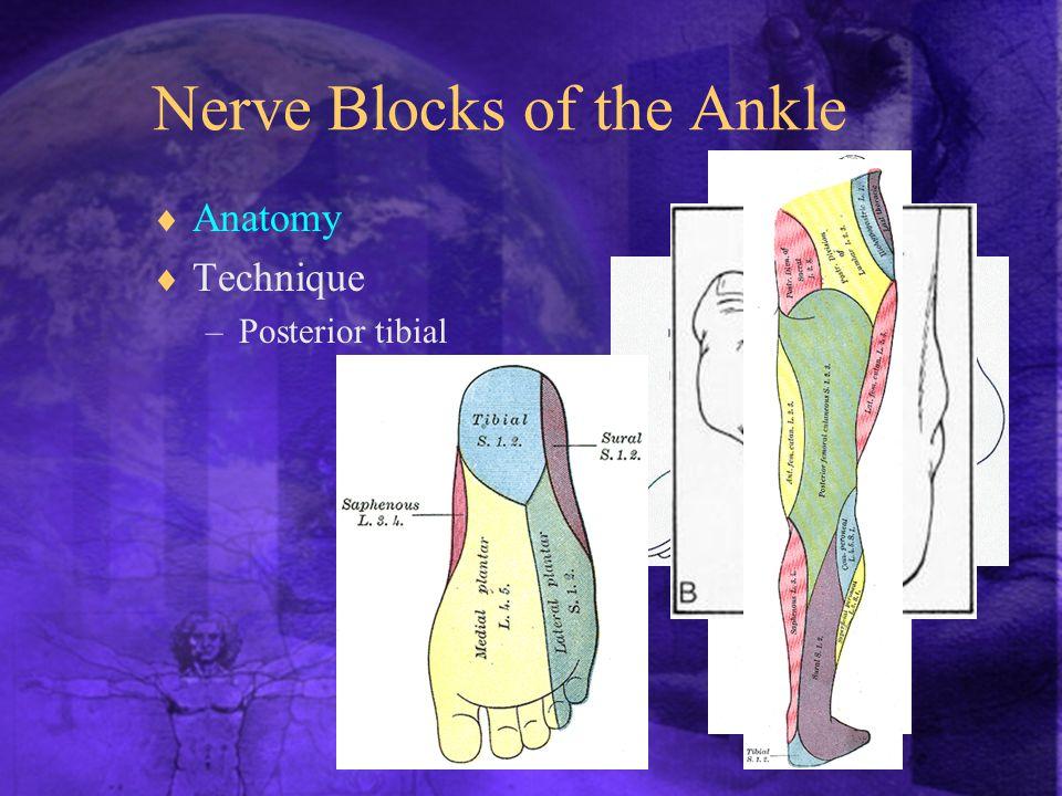  Anatomy  Technique –Posterior tibial